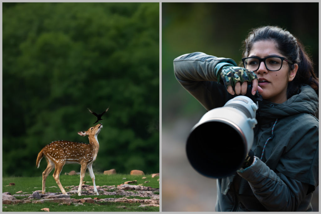 Aarzoo Khurana, an ace Wildlife Photographer creatively captures the beauty of the natural world